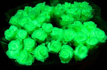 Бизнес идея светящиеся цветы